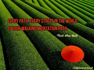 Image Attribution - mindfulnessworkshops.dk