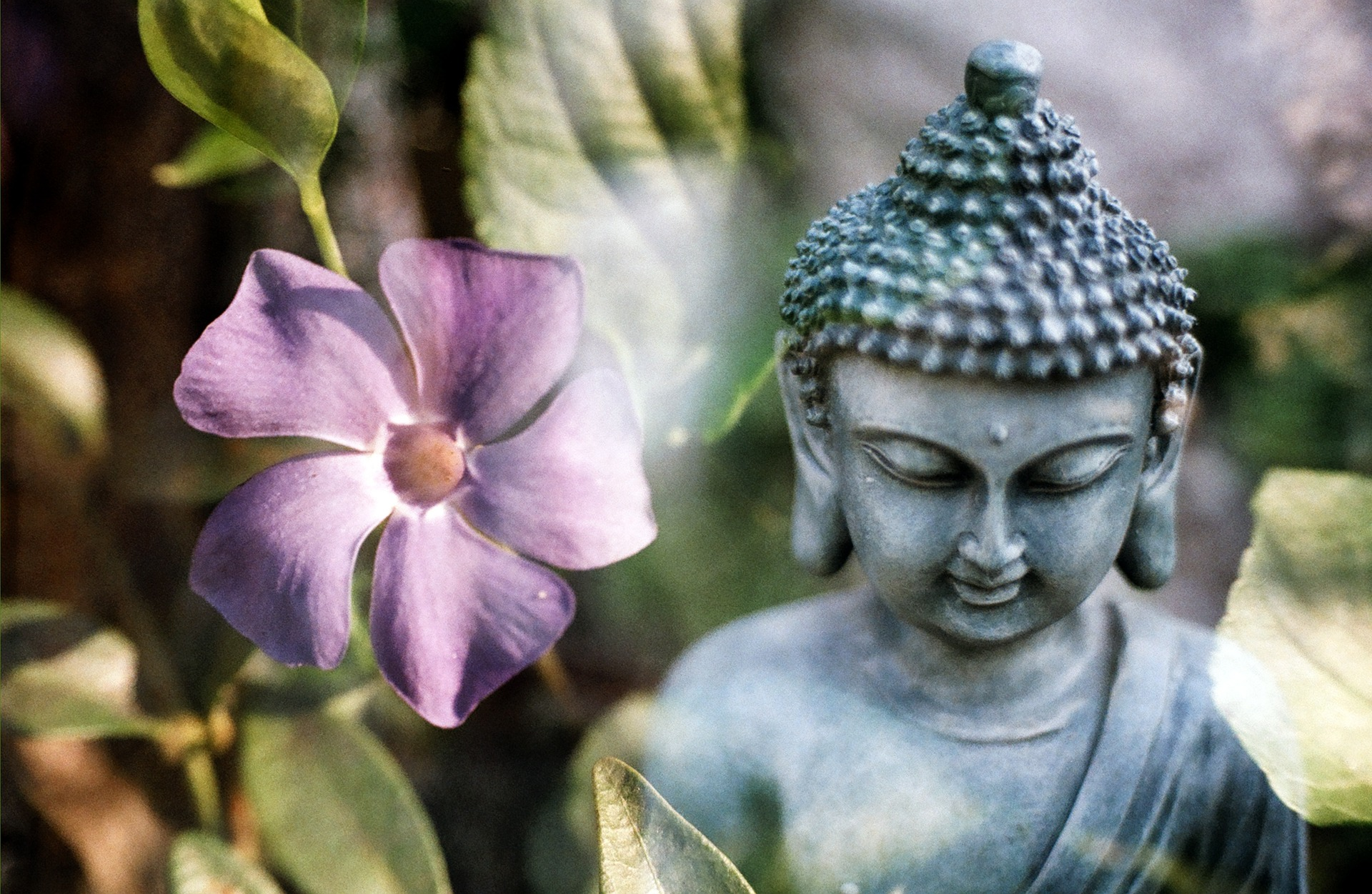 15 of the Best Meditation Techniques in Buddhism